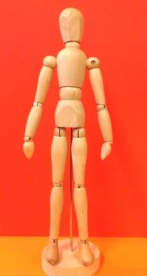 Kroppens proportioner - docka